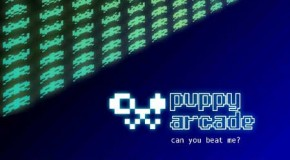 Puppy Arcade Interview With Scott Jarvis